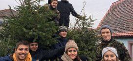 Einladung Tannenbaumsammlung  und Tannenbaumweitwurf